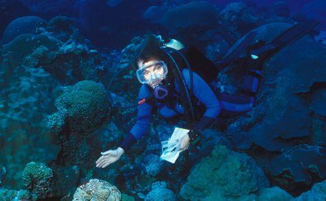 13 best Sylvia Earle Marine Biologist images on Pinterest Nature - marine biologist job description