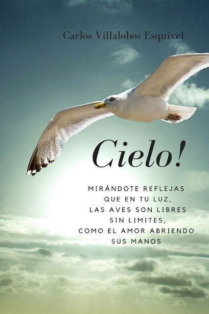Entre Los Versos De Carlos: Cielo