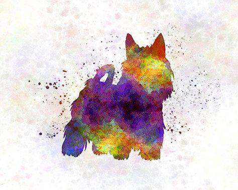 Australian Silky Terrier 01 in watercolor Fine Art por Paulrommer