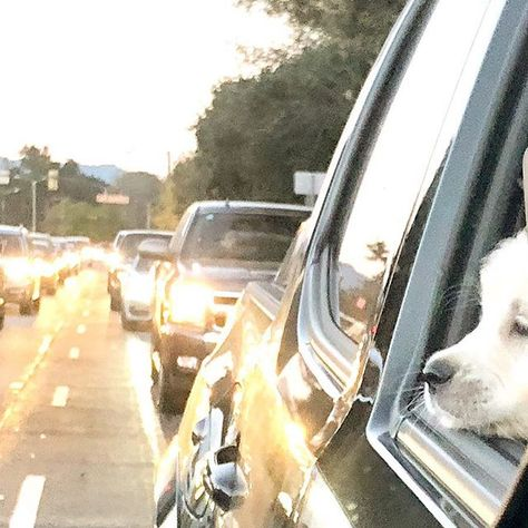 dailybarker Objects in mirror are closer...