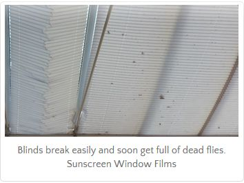 Sunscreen For Conservatory Conservatory Roof Blinds Conservatory Roof Conservatory