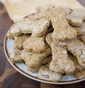 Pumpkin Cranberry Dog Cookies Recipe Dog Biscuit Recipes