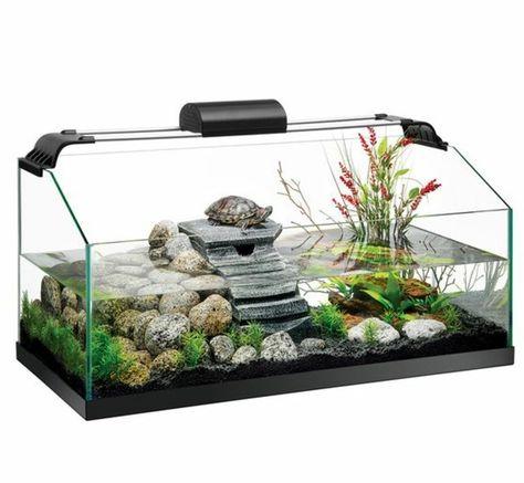 Die besten 25+ Aquarium einrichtung Ideen auf Pinterest Live - deko fur aquarium selber machen