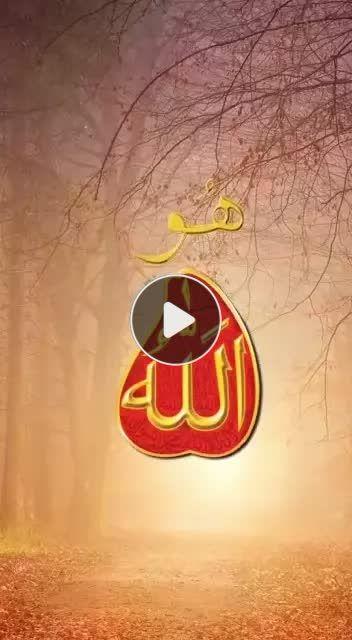 Pin By Khanqah Sarwari Qadri On Tik Tok Videos Add Music Lip Sync School Logos