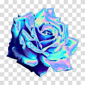 Garden Roses Blue Rose Sticker Picsart Studio Space Aesthetic Transparent Background Png Clipart Vaporwave Rose Art Drawing Overlays Transparent Background