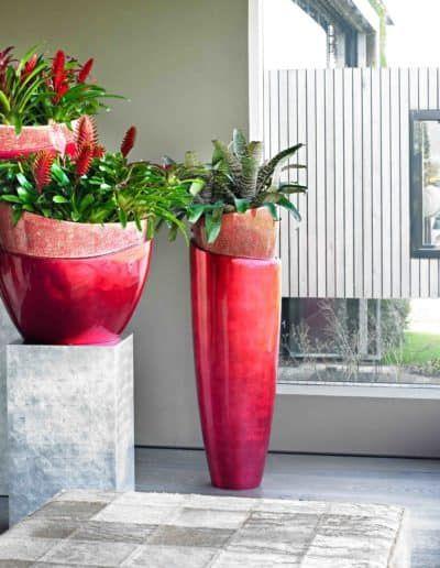 Luxeriose Pflanzengefasse Pflanzen Pflanzengefasse Und Pflanzkubel