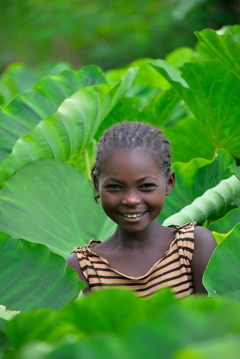 In the Taro Garden, Wollaita Tribe, Ethiopia - Explore the World with Travel Nerd Nici, one Country at a Time. http://travelnerdnici.com