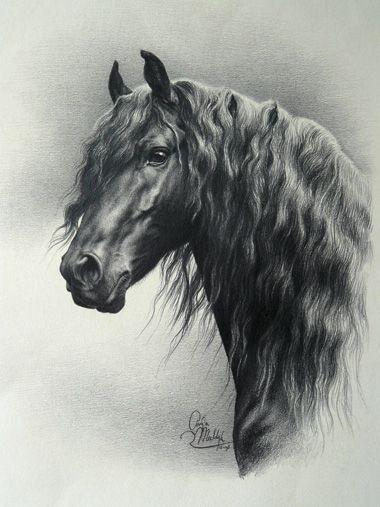 Gemalte Friesenhengst Horse Art Drawing Horses Horse Artwork
