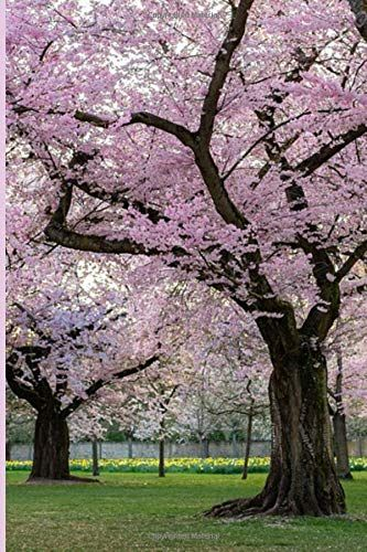 Uvg 15 Foot Large Cheap Artificial Trees In Silk Cherry Blossoms For Wedding Background De Artificial Cherry Blossom Tree Blossom Tree Wedding Artificial Trees
