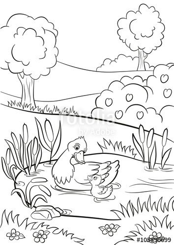 Coloring Pages Kind Duck And Little Cute Duckling Swim On The Pond Coloring Pages Colouring Pages Barbie Drawing