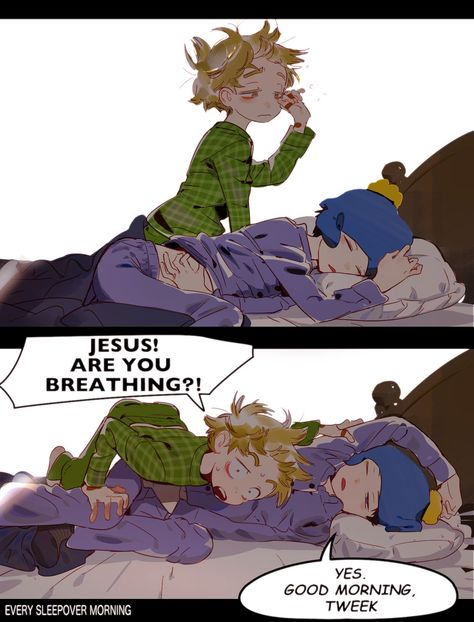 Creek ▪ Craig x Tweek ▪ South park South Park Anime, South Park Funny, South Park Memes, South Park Fanart, South Park Quotes, Arte Emo, Tweek South Park, Craig South Park, Style South Park