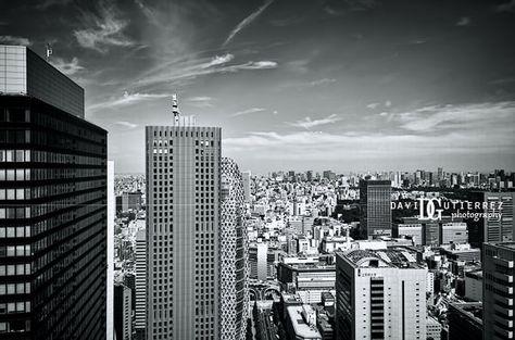 """""""View From Sumitomo Building"""", Shinjuku, Tokyo, Japan"""