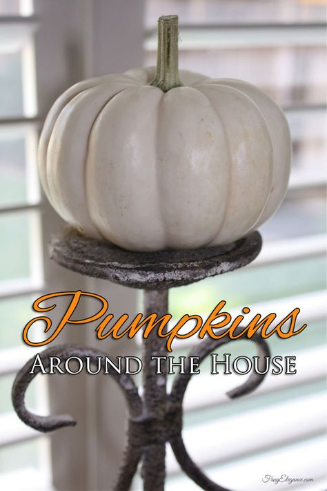 LOVE Fall & LOVE Pumpkins- So many choices. Come see some of our favorite Pumpkin Home Decor Items around the house...