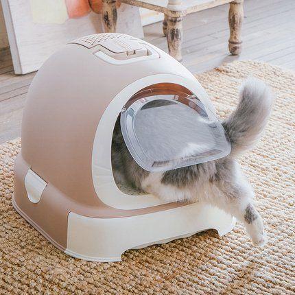 Favorite 2 Packs Extra Large Cat Litter Box Cat Litter Box Cat Litter Large Cats