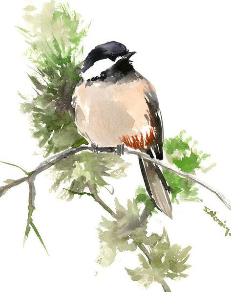 Bird art print ACEO Limited Edition-Landing bird Gift for her Chickadee
