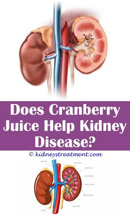 Renal Diet Life Kidney Disease Symptoms Kidney Disease Kidney Disease Recipes