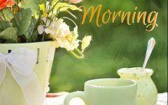 Good Morning With Lemon Green Tea อร ณสว สด