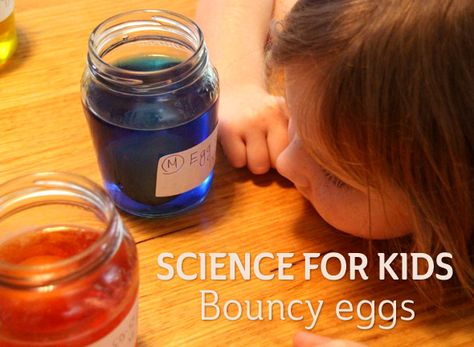 Science for kids: Bouncy eggs experiment   Childhood101