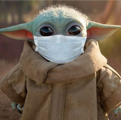 Got my self some protection - BabyYoda wallpaper Images Star Wars, Star Wars Pictures, Yoda Pictures, Funny Pictures, Yoda Funny, Yoda Meme, Star Wars Meme, Star Wars Baby, Yoda Images