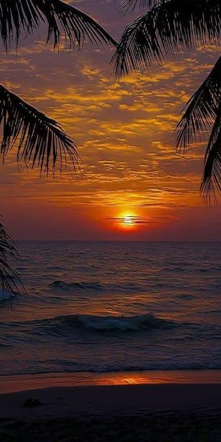 Hd Walpepar In 2020 Sunset Pictures Nature Pictures Sky Aesthetic