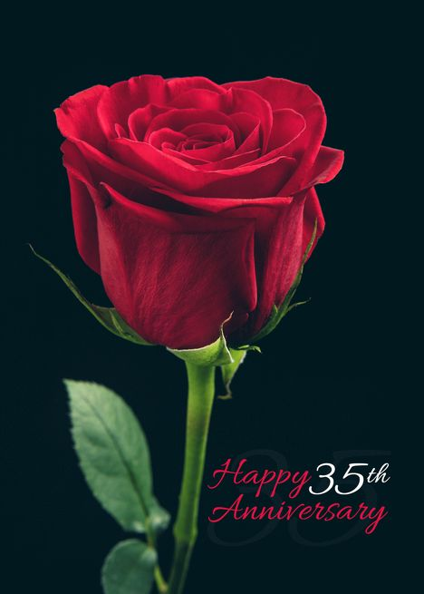 Happy 35th Anniversary Red Rose Card Ad Affiliate Anniversary Happy Card Rose Happy 10th Anniversary Happy 65th Anniversary Happy 40th Anniversary