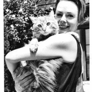 Famous Cat Lovers Actors Actresses Movie Celebrities In 2020 Celebrities With Cats Cats Cat Lovers