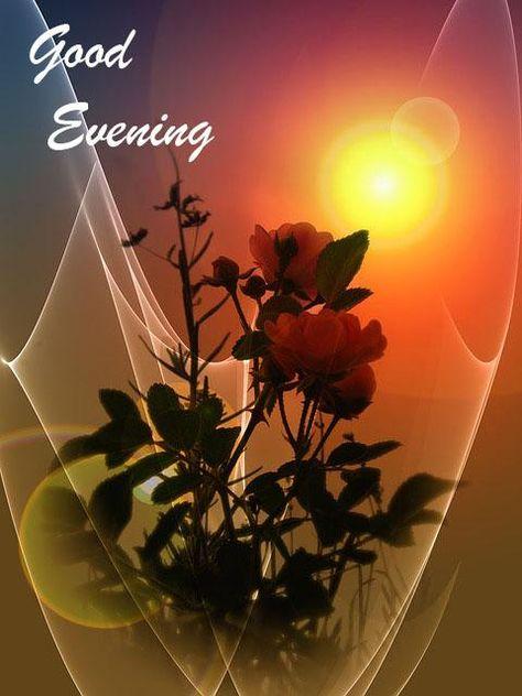 Good Evening Images/Pics
