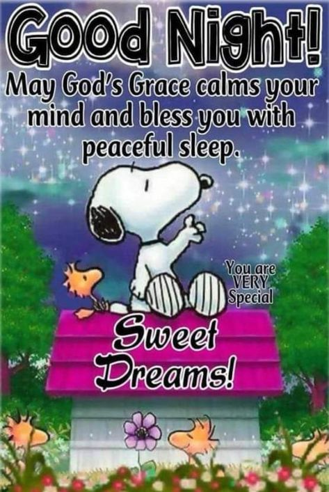 50 Best Good Night Quotes And Sayings - Glückliche Gedanken Good Night Greetings, Good Night Messages, Good Night Wishes, Good Night Sweet Dreams, Good Night Quotes, Good Night Beautiful, Snoopy Images, Snoopy Pictures, Good Night Prayer