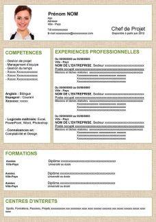 Cv Type Sans Experience Professionnelle Exemple Cv Comment Faire Un Cv Cv Type