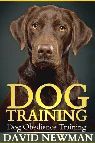 Dog Training Use A Shake Can When Training Put Some Coins In