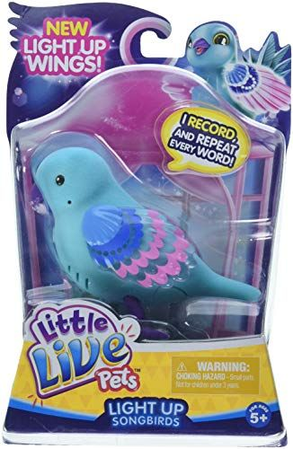 Little Live Pets Bird Single Pack Shelly Shimmer Children Https Www Amazon Com Dp B079fvbl95 Ref Cm Sw R Pi Dp U X Rzxmbbsf Little Live Pets Pets Pet Bird