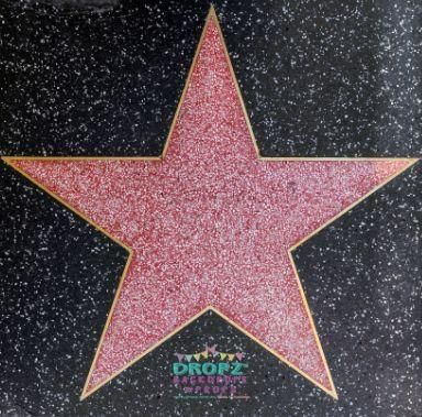 HOLLYWOOD - JUNE empty star on Hollywood Walk of Fame on June 2012 in Hollywood, California. This star is located on Hollywood Blvd. and is one of 2400 celebrity stars. by Jorg Hackemann, via Shutterstock