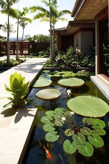 42 Awesome Fish Pond Design Ideas For Your Backyard Landscape - Garden designs - Paisagismo Tropical Landscaping, Tropical Garden, Backyard Landscaping, Landscaping Ideas, Backyard Ponds, Koi Ponds, Fun Backyard, Garden Ponds, Modern Landscaping