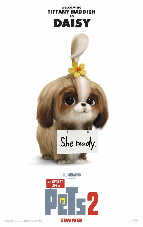 Universal Releases Another New Character Trailer And Poster For The Secret Life Of Pets 2 Secret Life Secret Life Of Pets Pets