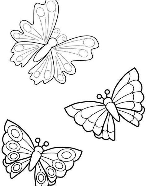 Disegni Per Bambini Farfalle Da Colorare Disneyreport Farfalla