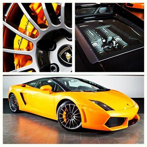 8 Best Lamborghini LP560 4 Bicolore Images On Pinterest | Bicolor Cat, Lamborghini  Gallardo And Fast Cars