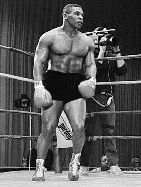 Iron Mike Tyson Mike Tyson Boxing Champions Tyson