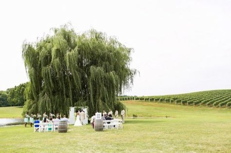 Trump Winery Virginia Wedding With Images Virginia Weddings African American Couples Virginia