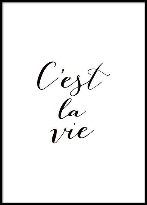 Affiche Avec Citation En Français Noir Et Blanc Citations