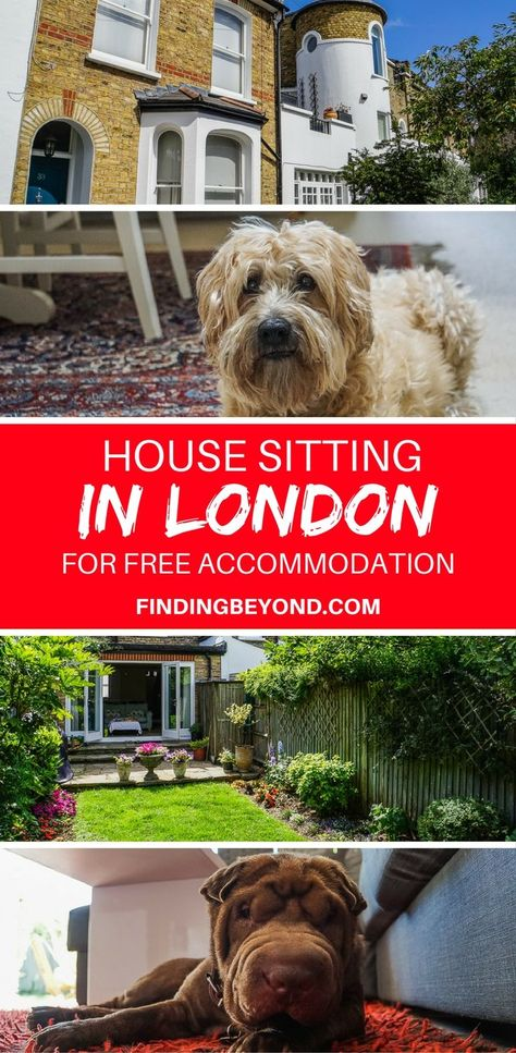Read about our experience house sitting in London to gain free accommodation for one month! London house sitting can save you thousands of pounds as you travel the world. | Cheap accommodation | Free Accommodation | #travel #travelblogger #europe | #housesitting | Backpacking Europe | Cheap accommodation in London |