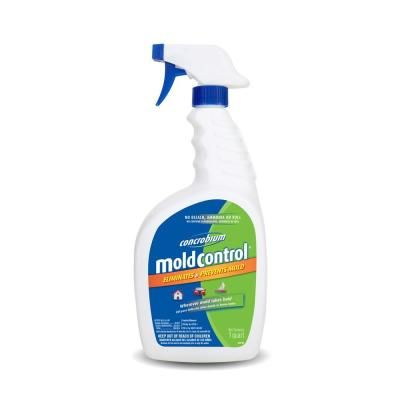 Cleaning Mold From Bathroom Ceilings Lovetoknow Bathroom Ceiling Cleaning Mold Mold In Bathroom