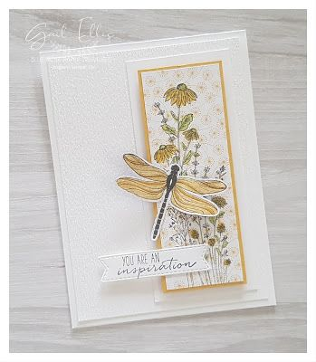Butterfly Cards, Flower Cards, Stamping Up Cards, Scrapbook Cards, Scrapbooking, Homemade Cards, I Card, Making Ideas, Cardmaking