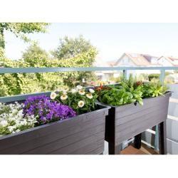 Garden Garantia Urban Hochbeet Set Fur Balkon Inklusive Anzuchthaube In Holzoptik Wetterfest Garantiag In 2020 Small Urban Garden Cottage Garden Plants Cottage Garden