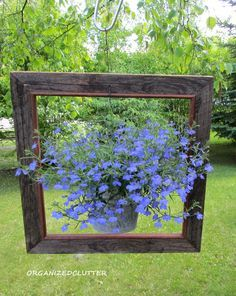 Framed Lobelia Planter Best Ideas for Hanging Baskets Front Porch Planters Flower Baskets Vegetables Flowers Plants Planters Tutorial DIY Ga Front Porch Planters, Hanging Planters, Garden Planters, Hanging Baskets, Hanging Gardens, Planter Boxes, Chair Planter, Garden Junk, Garden Chairs