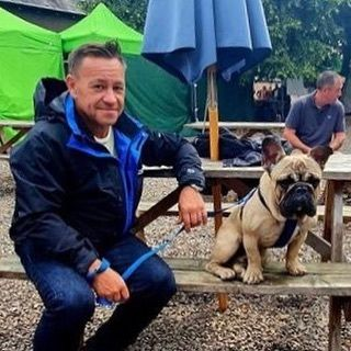 Camping Caravan Caravanlife Elddis Frenchie Frenchbulldog