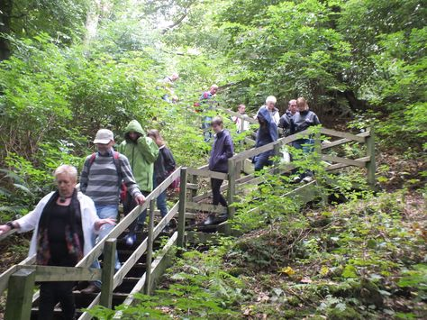 Our EHOD free tour of Rams Island has our group discover the hidden heritage and wildlife of the area