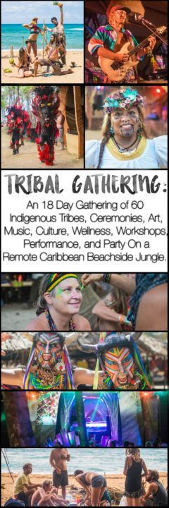 Tribal Gathering Festival Review + Guide - What is Tribal Gathering?