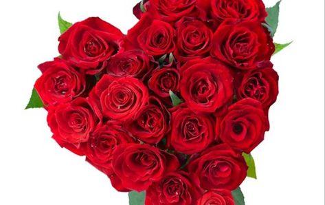 Paling Bagus 15 Rangkaian Bunga Mawar Bentuk Love Bunga Papan Berbentuk Love Adalah Bunga Papan Yang Di Design Bentuk Love Di 2021 Bunga Rangkaian Bunga Gambar Bunga