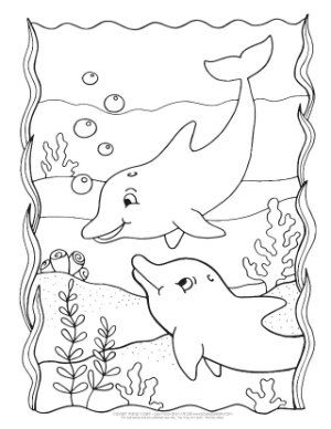 Dolphin Coloring Pages Dolphin Coloring Pages Coloring Pages