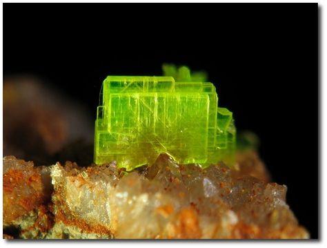 Autunite on Quartz. From La Dorgissière Mine, Saint-Amand-sur-Sèvre, Deux-Sèvres, Poitou-Charentes, France / Mineral Friends <3